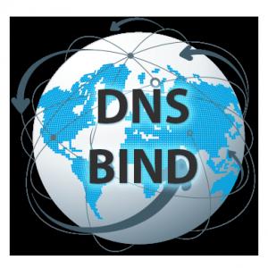 Fingerprinting DNS: ¿Cómo descubrir la versión de BIND ...